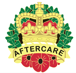 UDR & R IRISH (HS) Aftercare Service logo